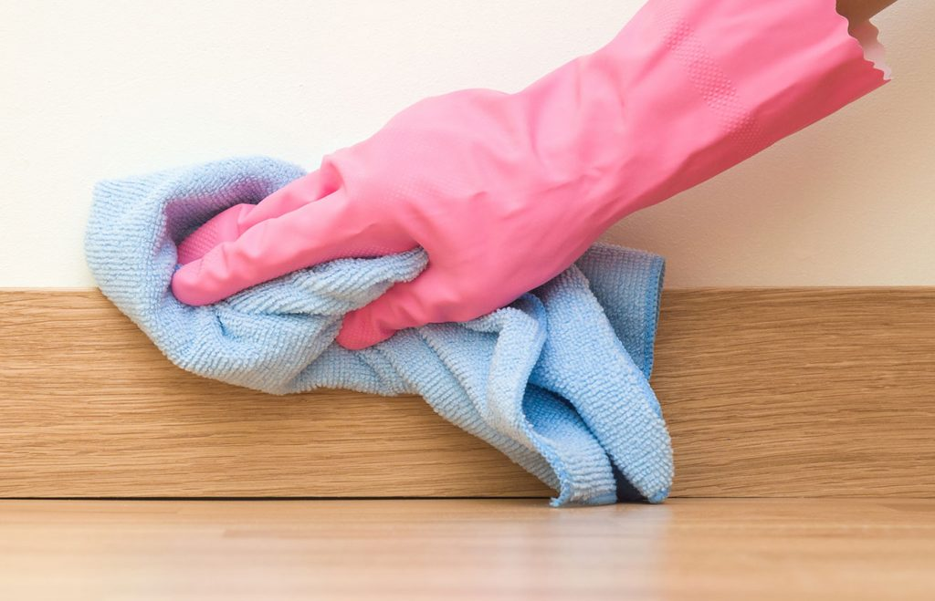 cleaning services idaho